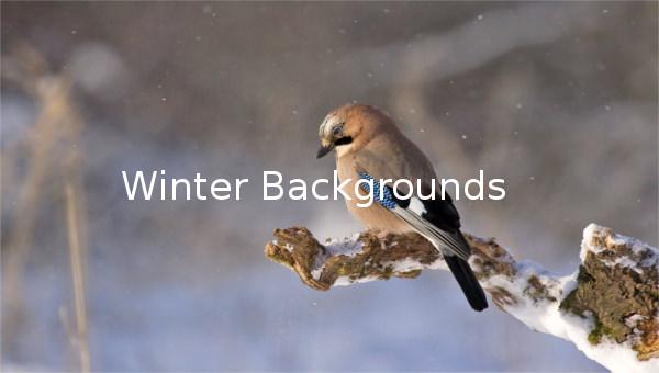 winterbackgrounds