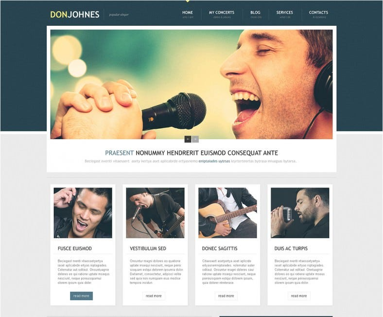 Responsive WordPress Theme for Singer