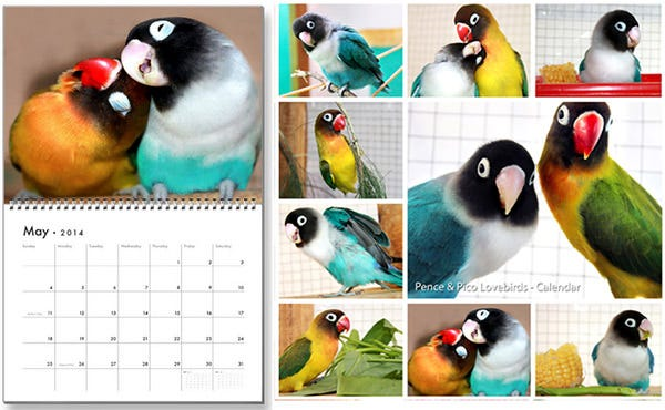 birds family calendar template