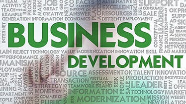 business development plan templates