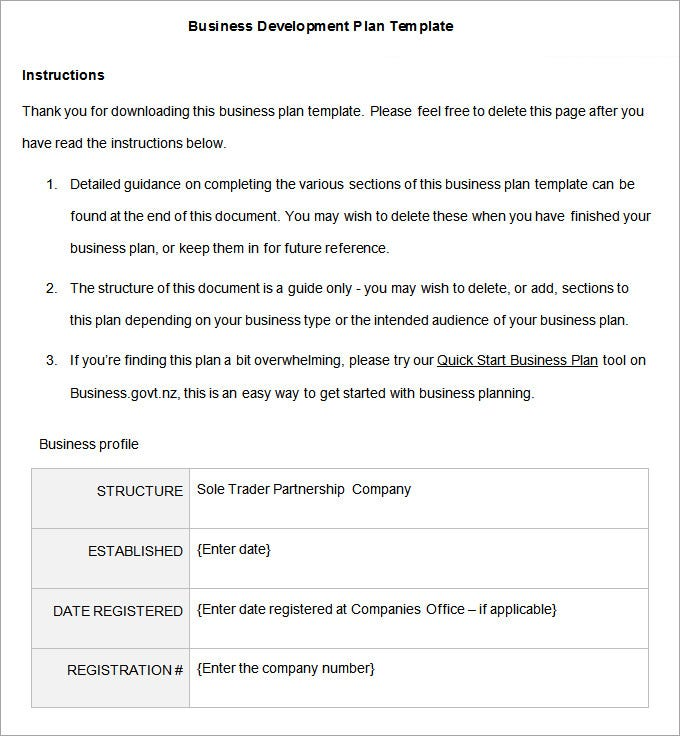 Business Development Plan Template Yelommyphonecompanyco - Developing a business plan template