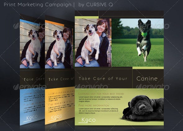 campaign flyer template