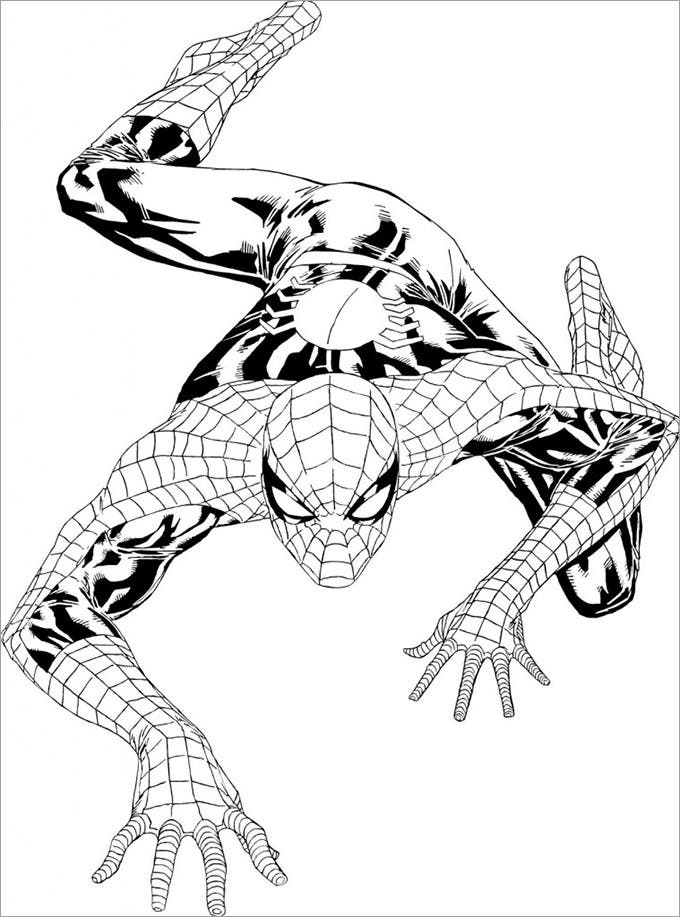 climbing wall spiderman coloring page