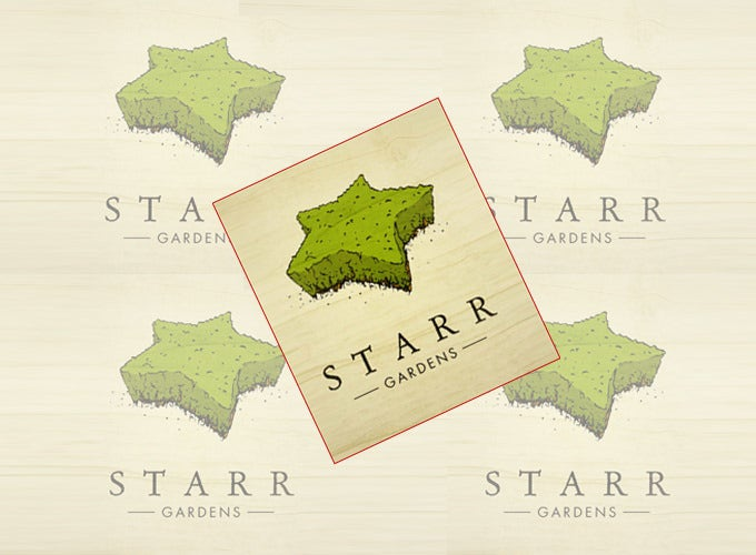 cute gardenstar star logo