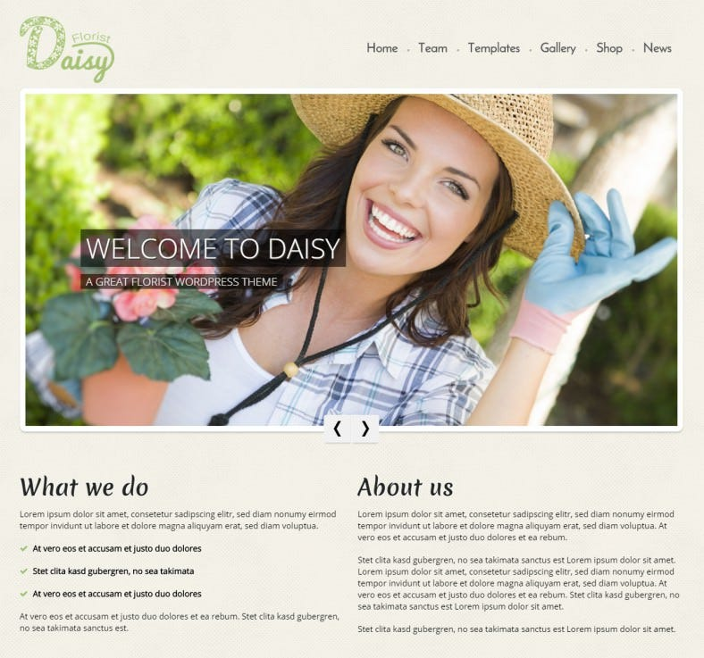 daisy – florist wordpress theme 69 788x737