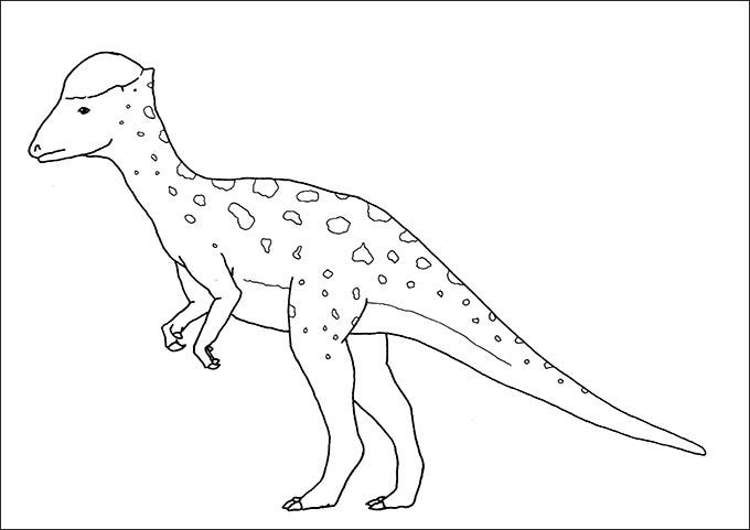 dinosaur picture to color