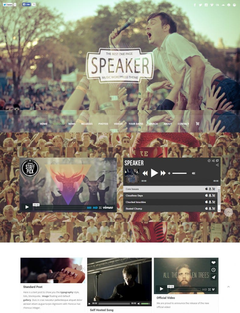 entertainment music wordpress theme 788x1027