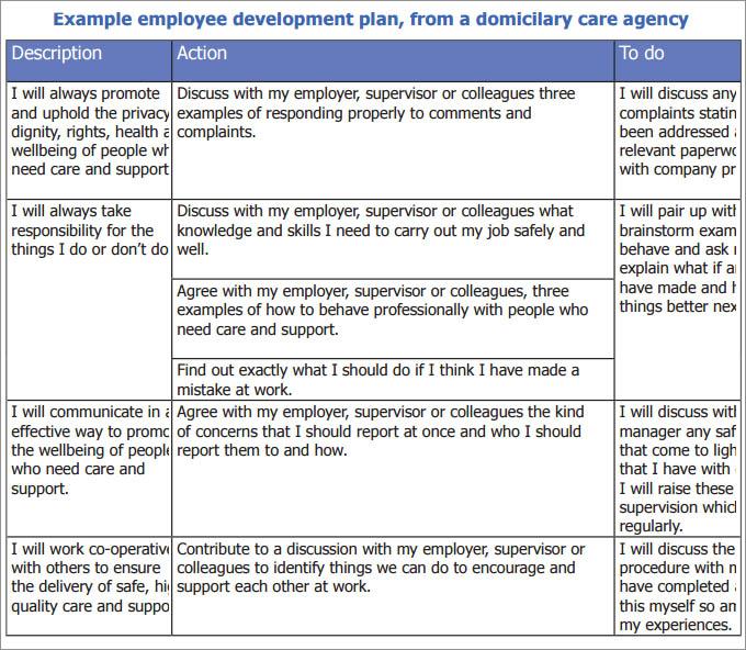 sample development plan