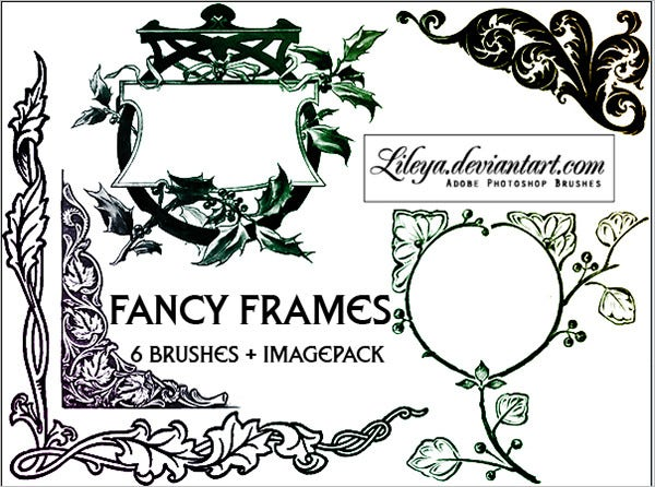 fancy brush frames