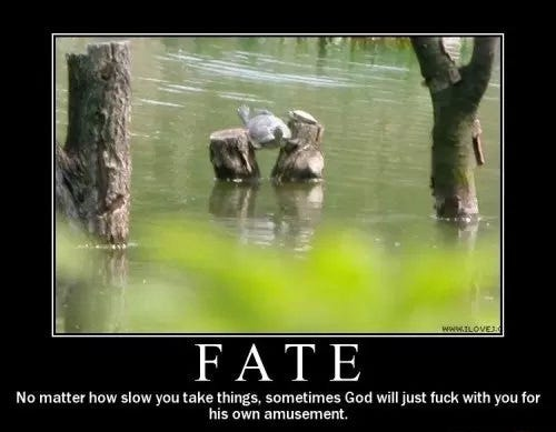 fate demotivational posters