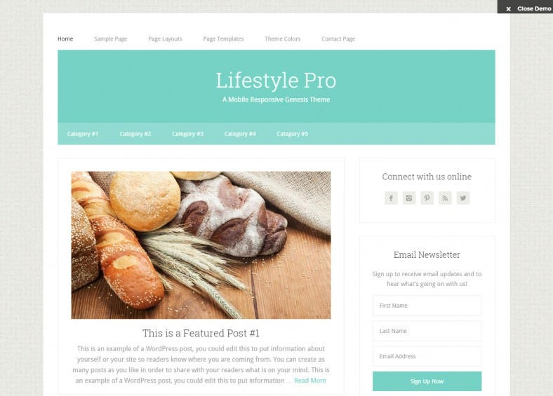 Lifestyle Pro WordPress Template