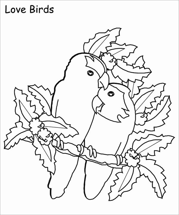 love birds template