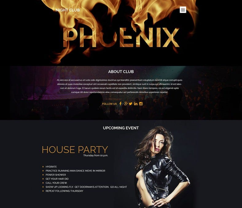 night club wordpress responsive theme 788x676