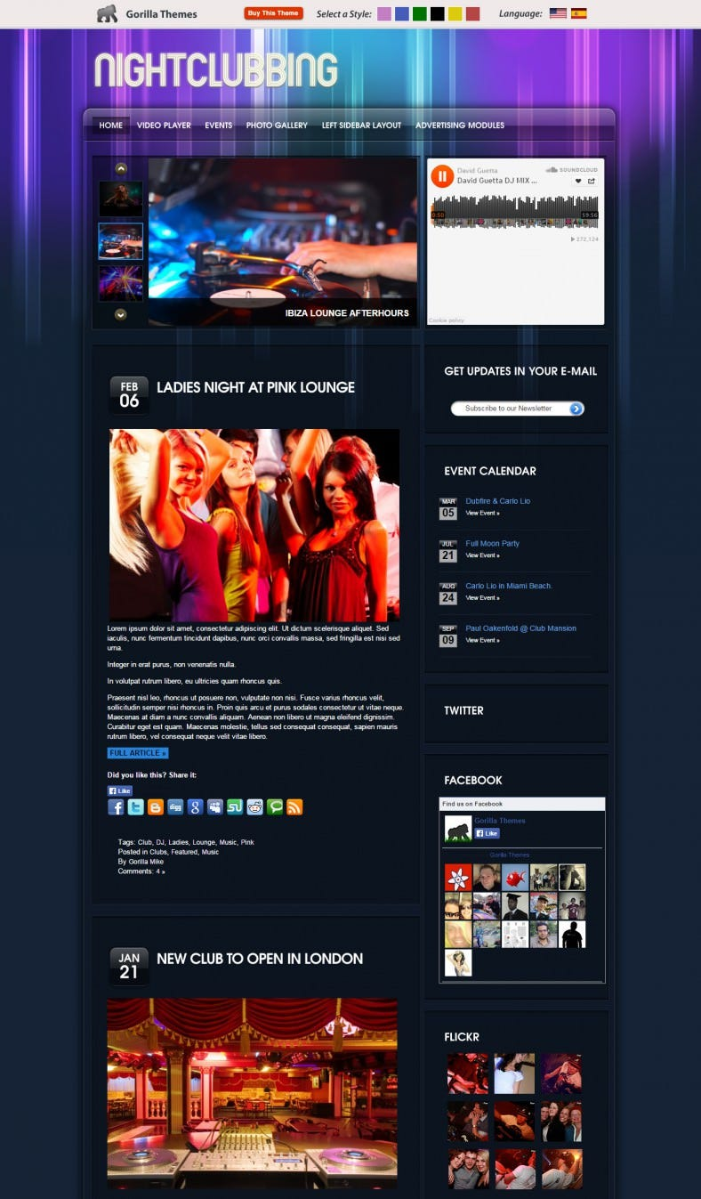 night dj wordpress template 69 788x1347