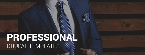 professional drupal templates