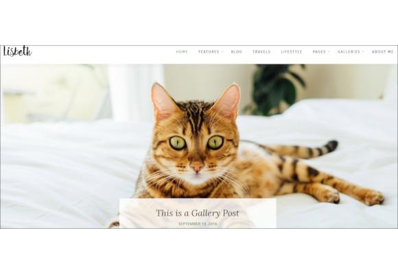 responsive life style wordpress blogger theme