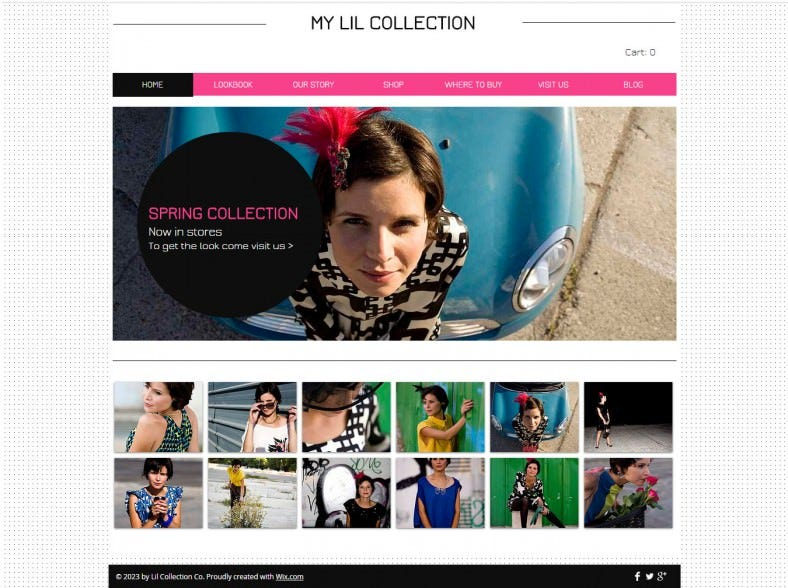 Retail Website Templates Free Download