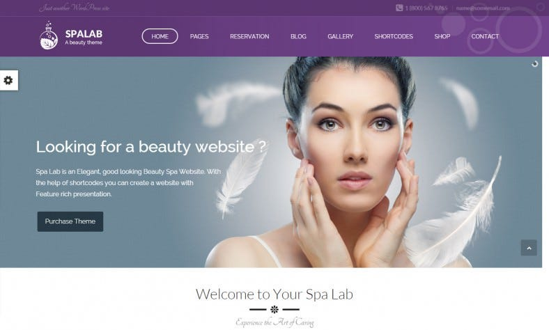 Responsive Spa Lab Wordpress Theme