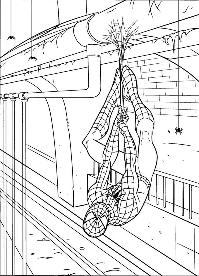 spiderman colouring page to print - Spiderman Coloring Pages Printable