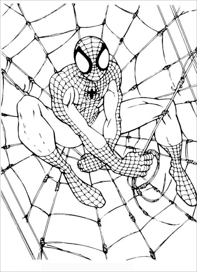 spiderman colouring pages free
