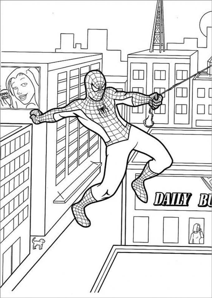 spiderman colouring