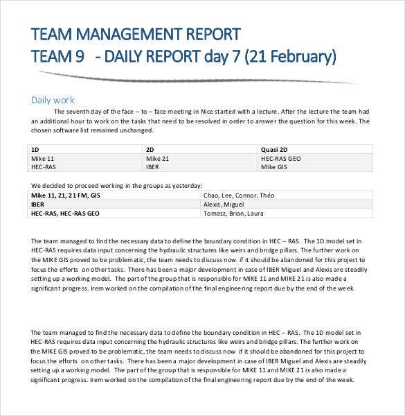 Sample Management Report Management Report Template – Daily Report Template Word