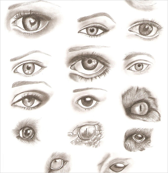 various eye pencil drawing
