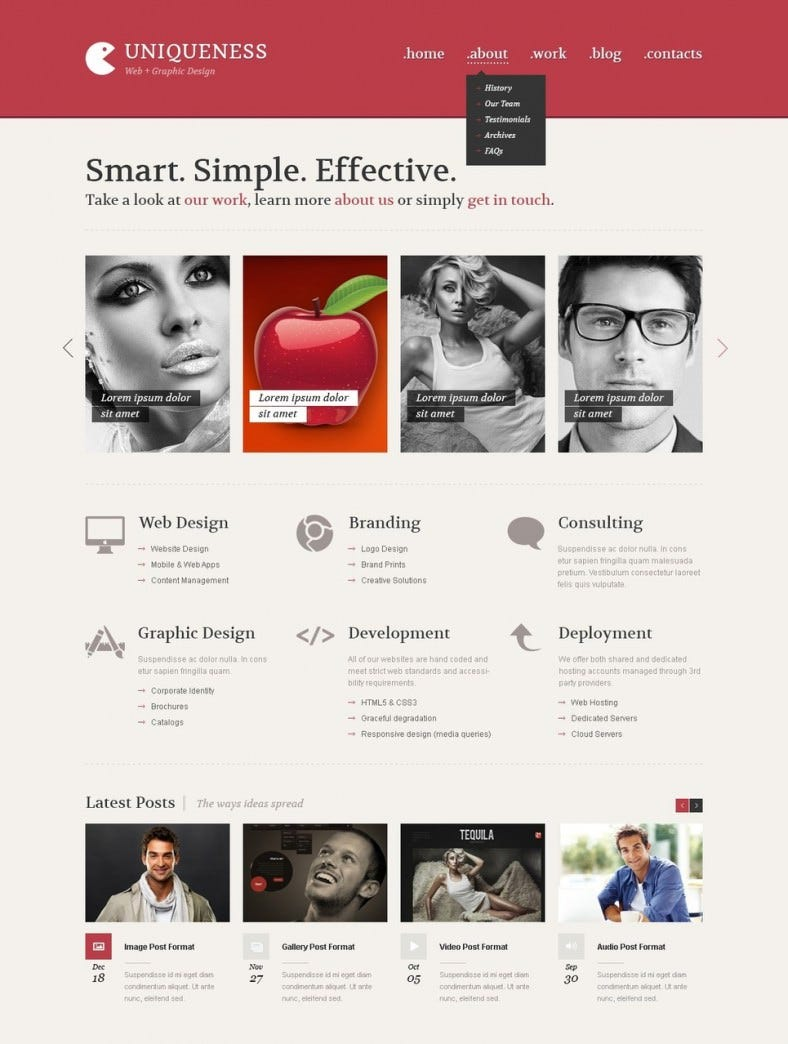 web developer minimalism wordpress theme 45 788x1044