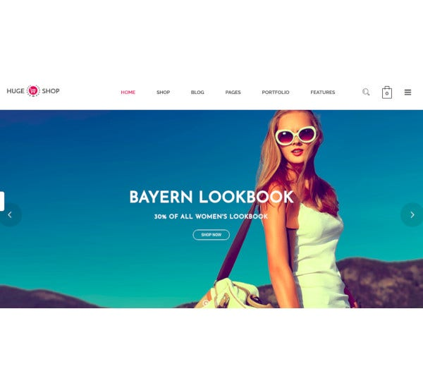wonderful multi concept wordpress theme
