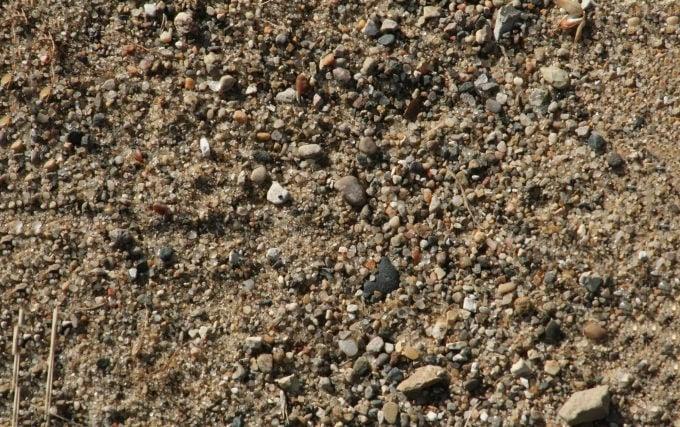 free sand texture 15102010