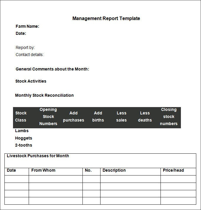 management reporting template