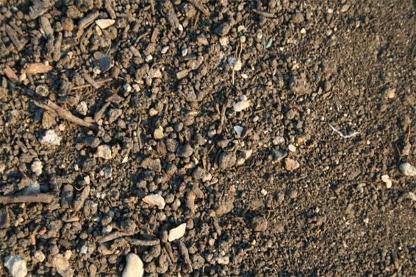sand dirt texture