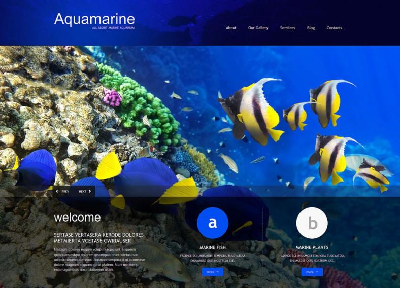 aqua blue responsive wordpress theme 75 788x568