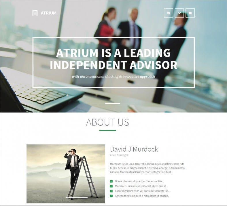 atrium financial advisor joomla template 48 788x716