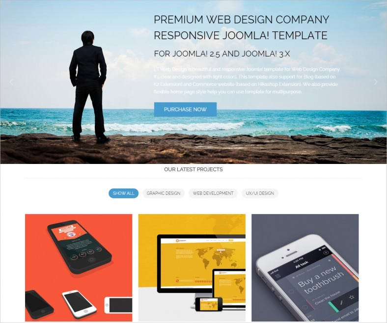 best web development company theme 49 788x658