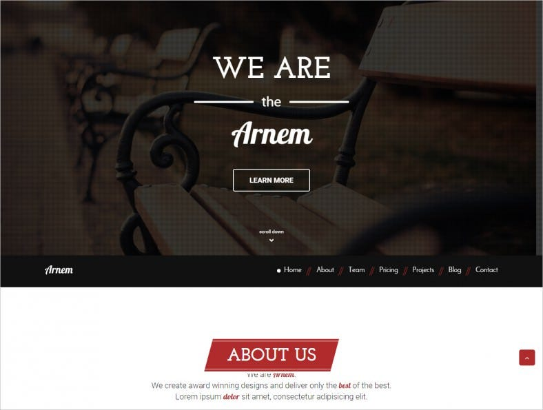 creative one page parallax theme 788x595