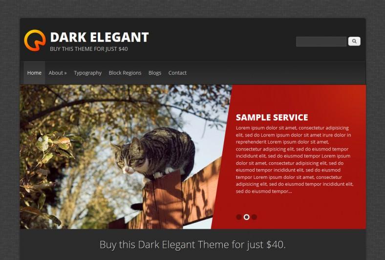 dark elegant1 788x532