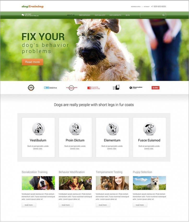 dog green responsive wordpress theme 75 788x929