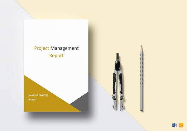 easy to edit project management report template1