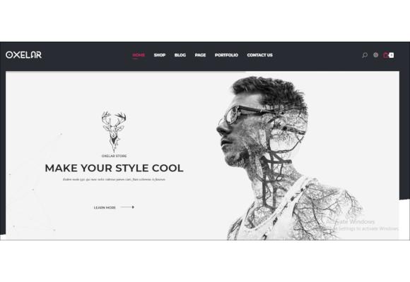 fashion responsive wordpress theme