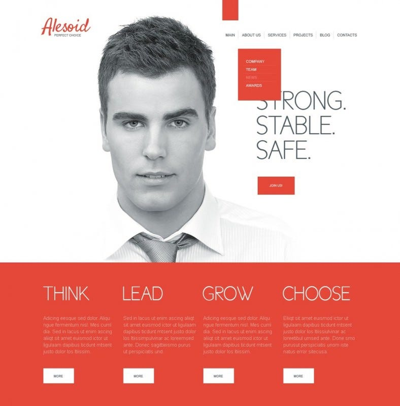 financial advisor drupal template 5 788x799