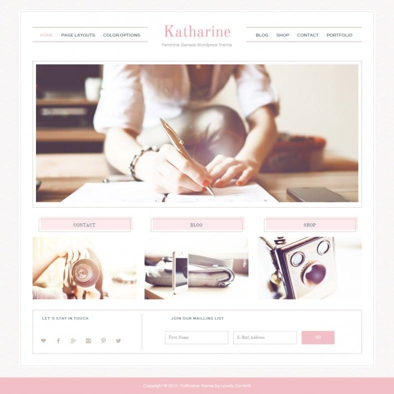 katharina pink responsive wordpress template 55 788x789