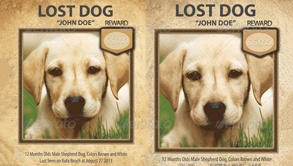 lostdogflyertemplate