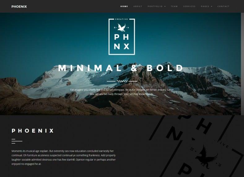 Minimal Drupal Portfolio Themes