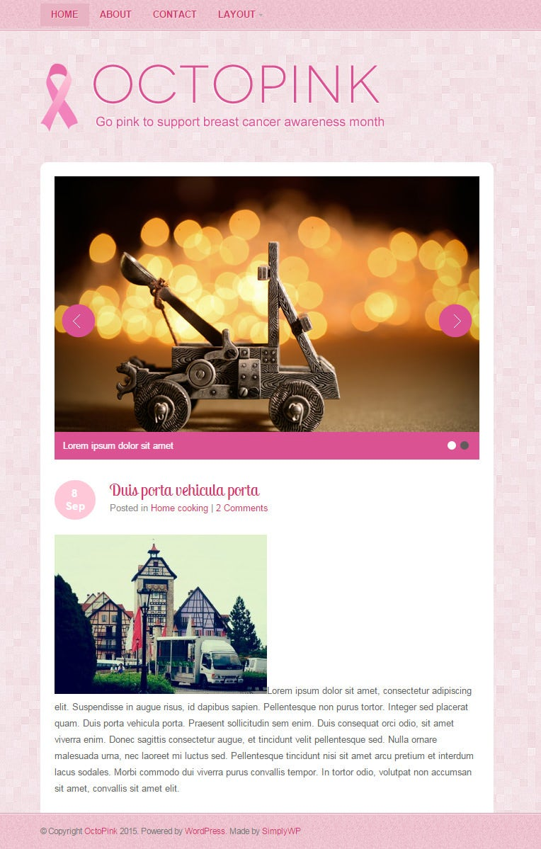 octopink responsive wordpress template 10