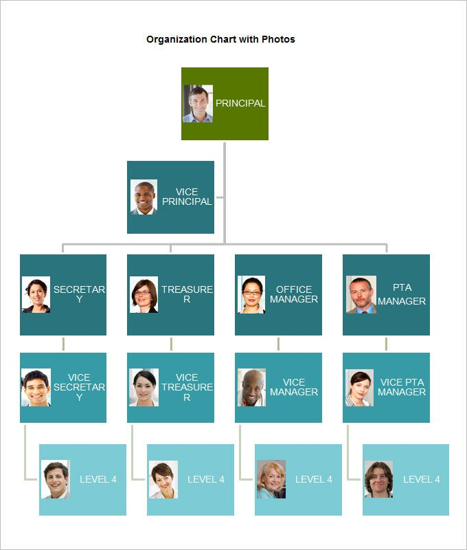 Sample Chart Templates organization chart free template : Organization Chart with Photos