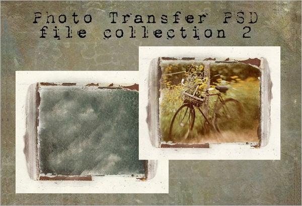 polaroid template 31 free psd format download free premium