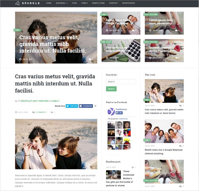 responsive sparkle news magazine drupal template 48 788x756