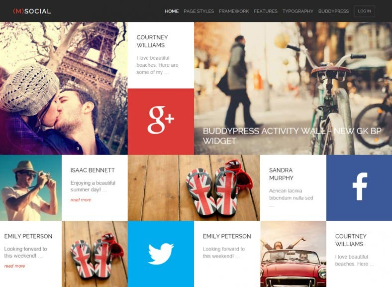 social media responsive wordpress theme 43 788x576