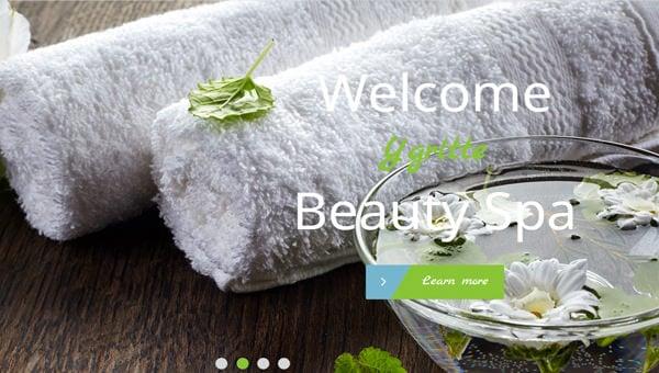 spa website templates